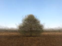 360° - Loon op Zand - © Frans Verschoor