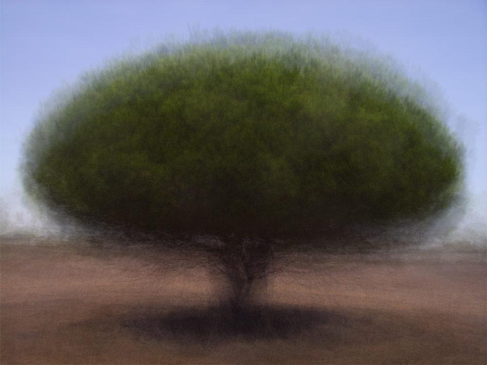 360° - Loon op Zand - © Frans Verschoor°