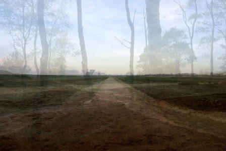 Stills - © Frans Verschoor
