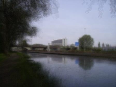 SFG2-100301-101119 - © Frans Verschoor