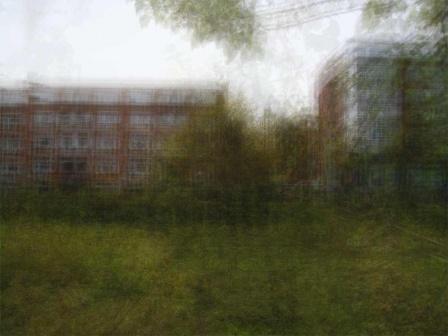Tuin-080215-110312 - © Frans Verschoor