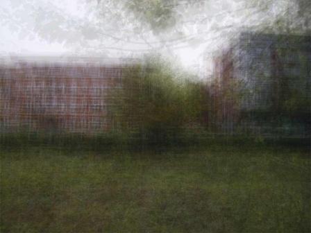 Tuin-080215-120726 - © Frans Verschoor