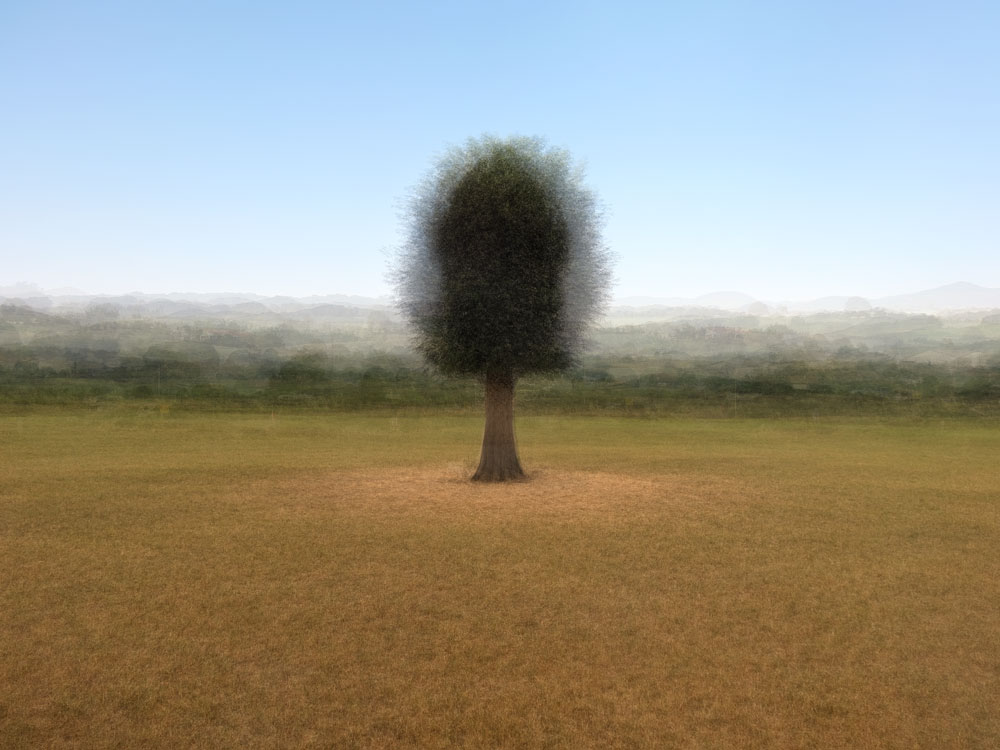 360° - Arruitz - © Frans Verschoor°