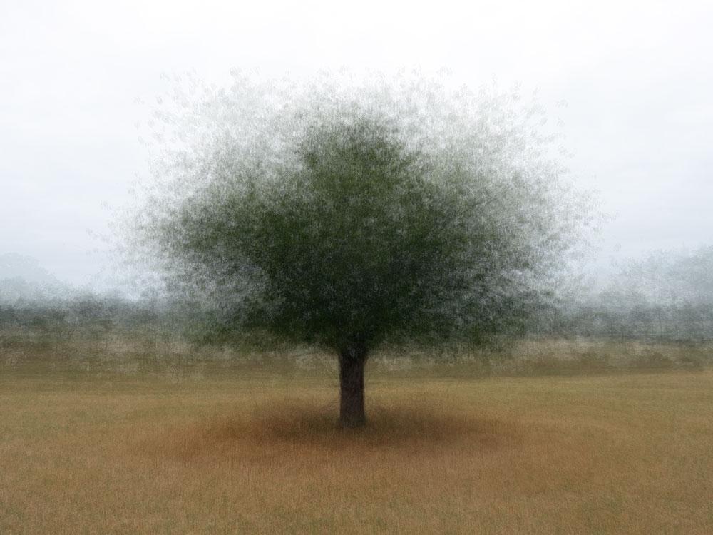 360° - Lekunberri - © Frans Verschoor°