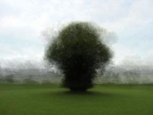 360° - Medebach - © Frans Verschoor