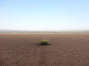 360° - Ouddorp - © Frans Verschoor