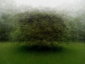360° - Vorden - © Frans Verschoor