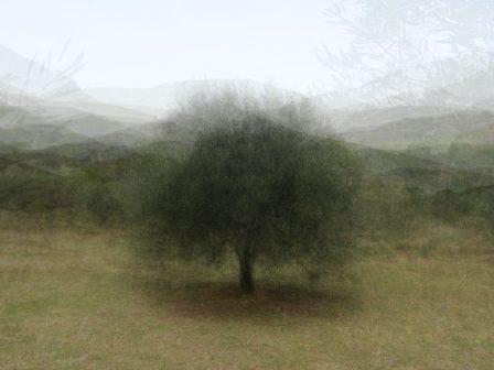 360° - Algarve - © Frans Verschoor