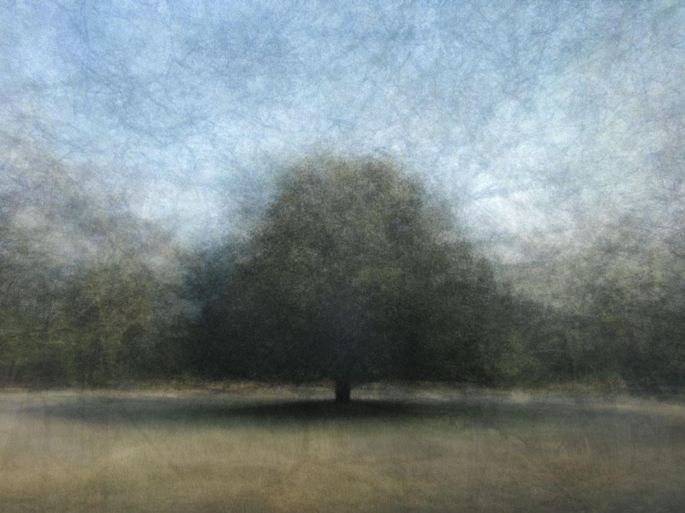 360° - Ginkelse heide - © Frans Verschoor
