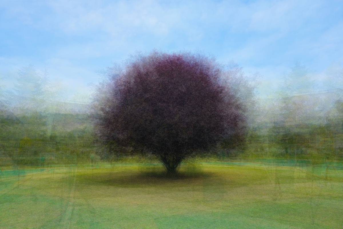 360° - Rolampon - © Frans Verschoor
